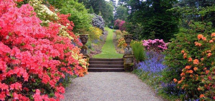 garden-470704_1280