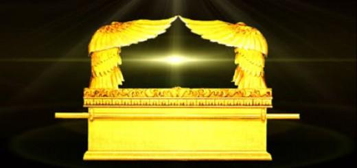 Ark-Yellow