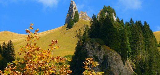 landscape-63254_1280