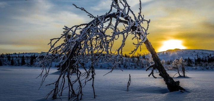 winter-610894_1280